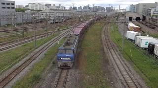 貨物列車 5075レ EF200-17 2017/05/14 東京貨物ターミナル