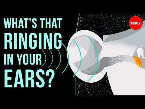 Video image: What's that ringing in your ears? - Marc Fagelson