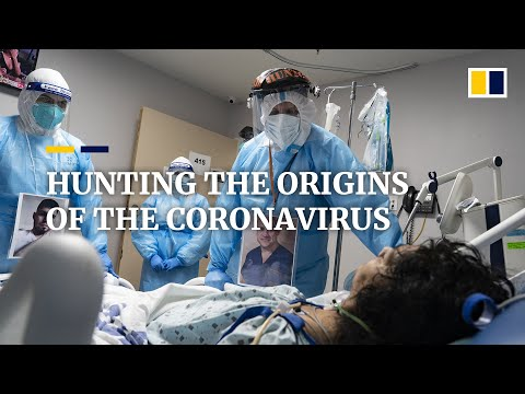 Seeking the invisible: hunt for origins of deadly Covid-19 coronavirus will take scientists to Wuhan