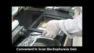 Microtek Bio-5000 Plus Gel Scanner