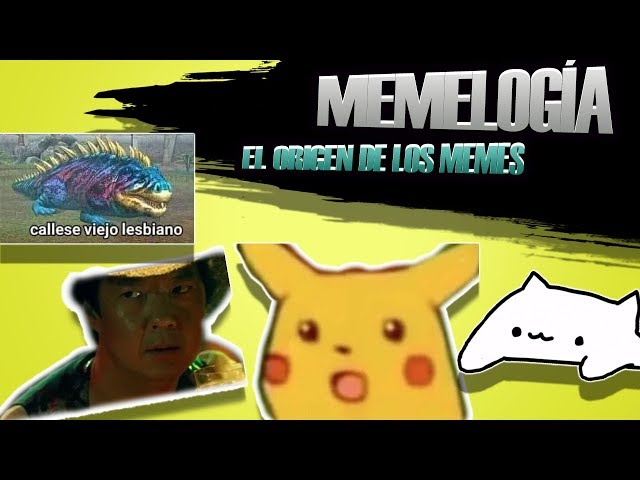 MEMELOGÍA Bongo Cat/Viejo Lesbiano/Surprised Pikachu/No lo se tu dime