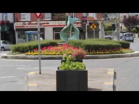 2012 Rialto Dublin 8 Ireland in Bloom