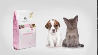 Чем кормить собаку? Органические корма для собак Natural Core