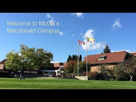 Discover McGill's Macdonald Campus
