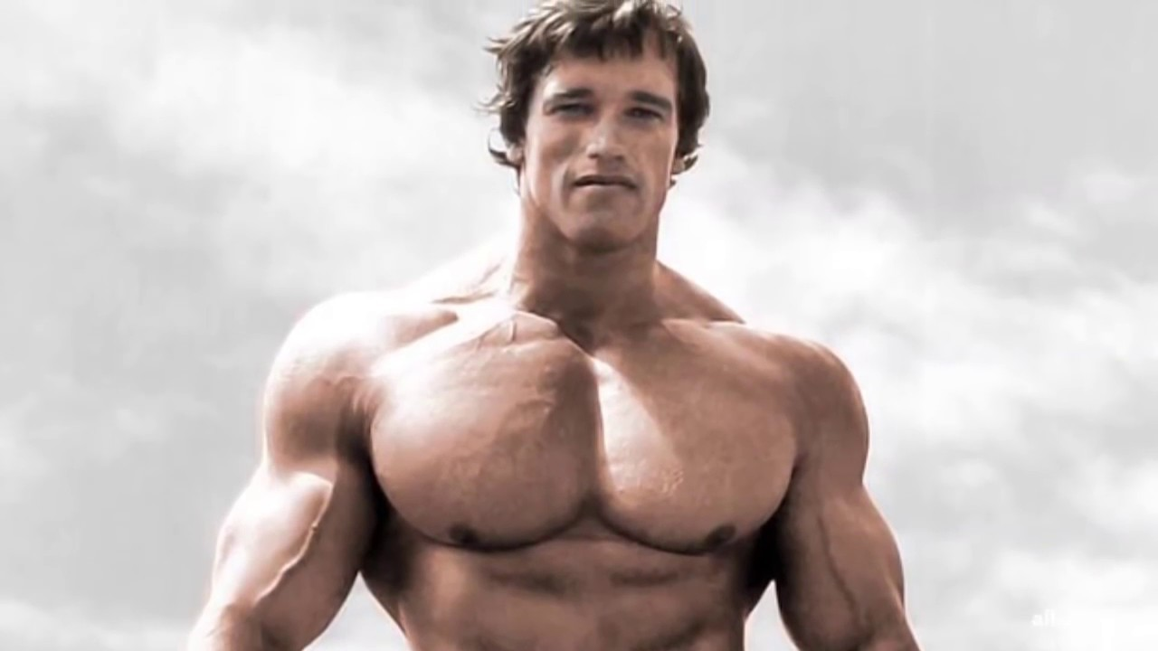 Image result for arnold chest