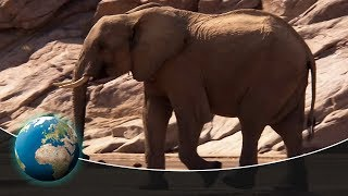 Namib - The Oldest Desert In The World