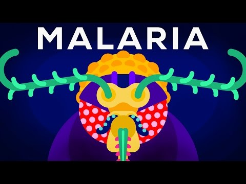 Thumbnail: Genetic Engineering and Diseases – Gene Drive & Malaria