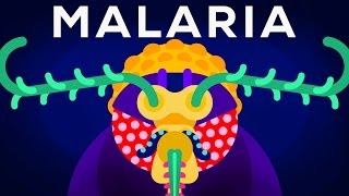 Genetic Engineering and Diseases - Gene Drive & Malaria