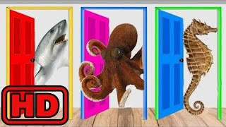 Kid -Kids -SEA Animals With Wooden Puzzle/ Learn Colors Nursery Rhymes for Kids/Real Animal Video