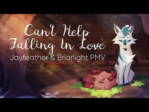 Can't Help Falling In Love || Jayfeather & Briarlight PMV