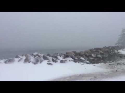 Storm Surge 2017 Hacketts Cove