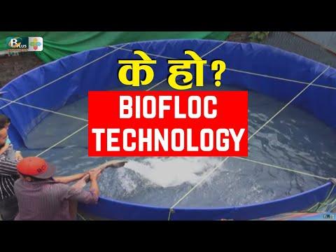 What Is & How To Do Biofloc Fish Farming In Nepal, Kathmandu | माछा पाल्न सकिने नयाँ  प्रबिधि
