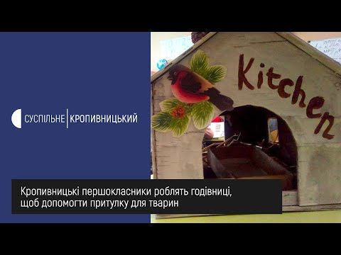 UA: Кропивницький: У Кропивницькому першокласники роблять годівниці, щоб допомогти притулку для тварин