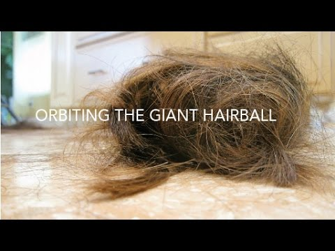 orbiting the giant hairball Michael malone's the future arrived yesterday and gordon mackenzie's  orbiting the giant hairball both illustrate that organizations all require.