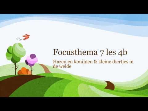 Focusthema 7 les 4b – De haas en het konijn & andere kleine dieren in de weide