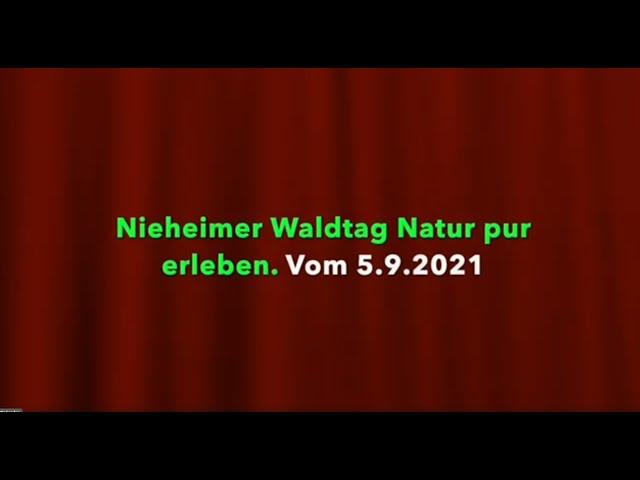 Rundgang Nieheimer Waldtag
