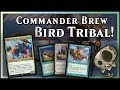 Derevi Bird Tribal! – Commander Brew l Magic the Gathering EDH Deck