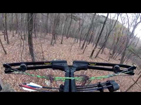 Mid-season 2017 West Virginia Crossbow Hunt (Self Filmed)