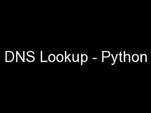 DNS Lookup - Python