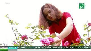 Cuộc sống 24h - VTC: Mỹ phẩm sạch Rova Vina