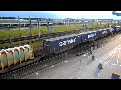 Rail Service Centre Rotterdam/ Shunter 203 102 + Melzo shuttle