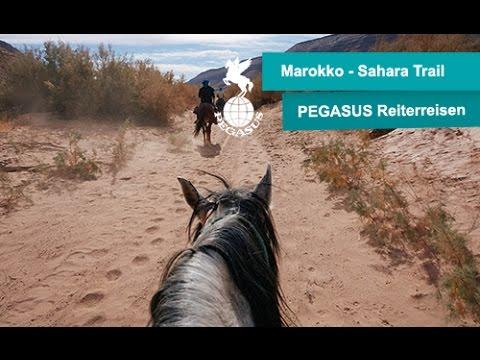 Bild: Reisetagebuch Marokko - Wüstenritt durch die Sahara