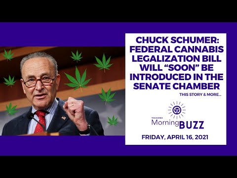 "Chuck Schumer: Federal Cannabis Legalization Bill Will ""Soon"" Be Introduced in the Senate Chamber"