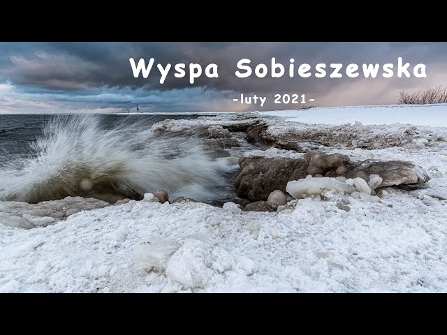 Wyspa Sobieszewska - luty 2021 | fotografuj #zemną