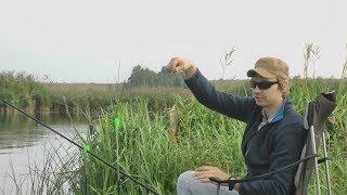 Рыбалка на Рязанской ГРЭС  02.09.2017.