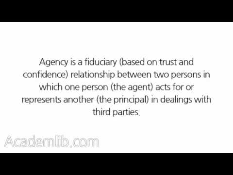 "What is ""agency""?"