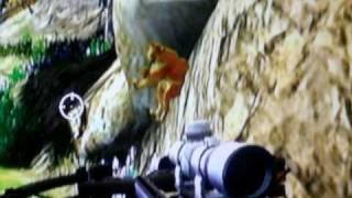 Cabela's Big Game Hunter 2010 Wii Glitch