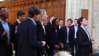 Work Song (A Cappella) - The Trinity College Accidentals