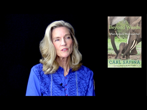 The Animal and Human Kingdoms with Miranda Alcott