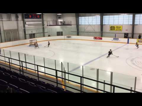 Central Ontario Wolves vs Thornhill Rebels - November 13, 2016