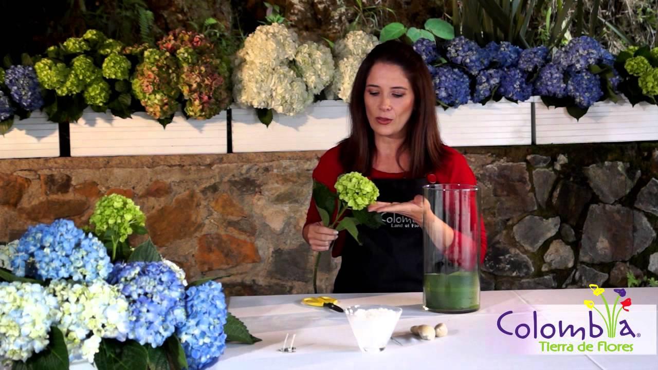 Decoraci n moderna con hortensias youtube - Decoracion con hortensias ...