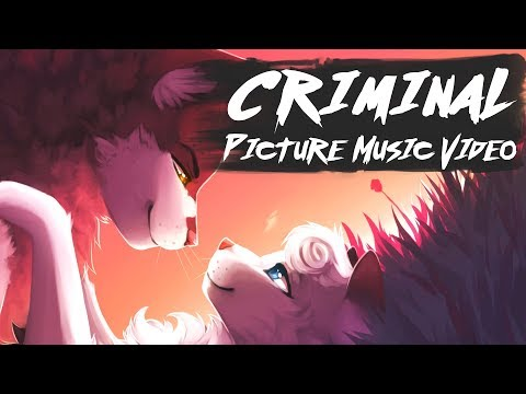 Snowfur x Thistleclaw: CRIMINAL  Animated Picture Music