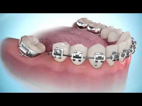 PROGRAMA PORTFÓLIO- Oral Estética- Multidisciplinaridade