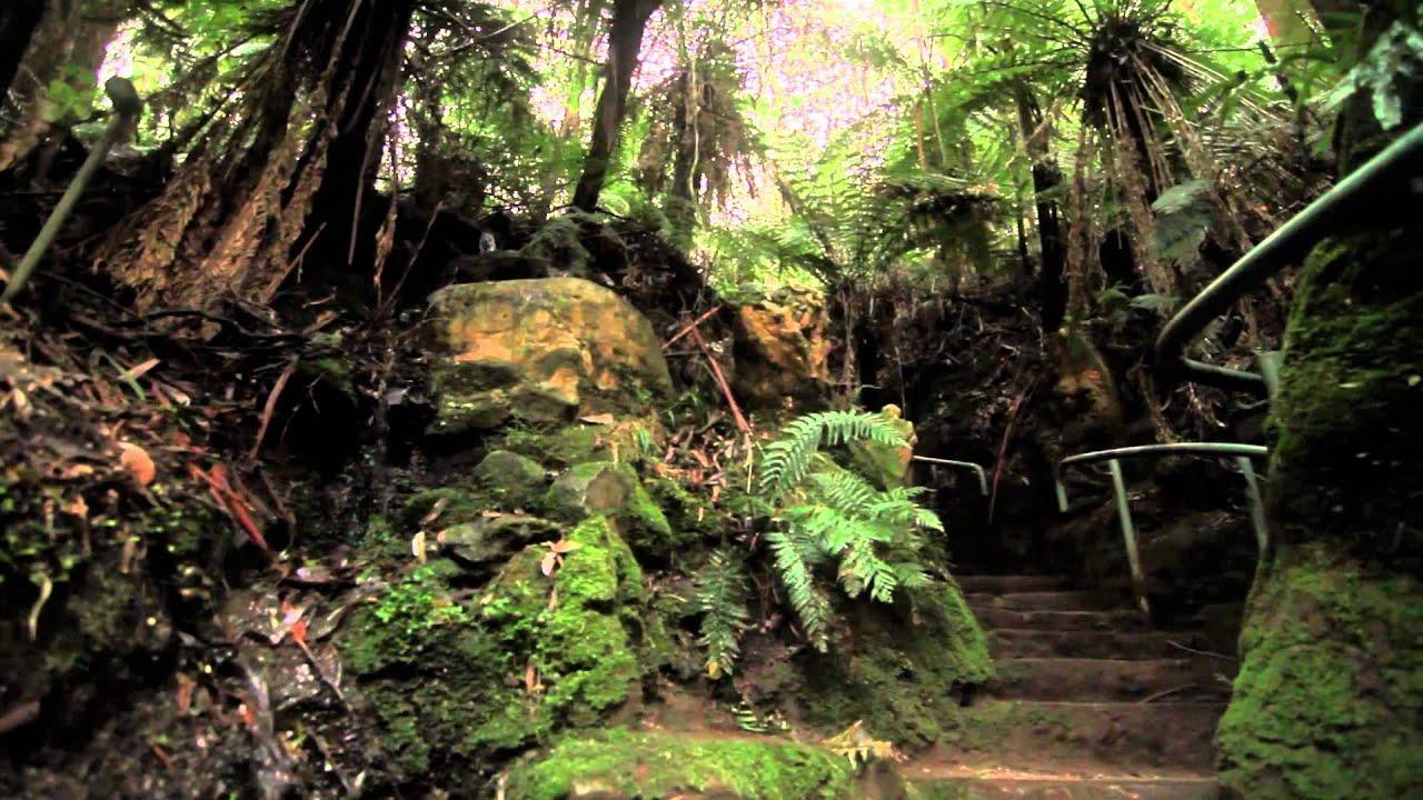 William Ricketts Sanctuary (Glidetrack Hybrid Test)