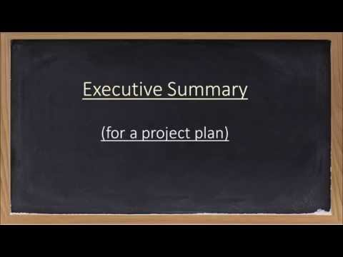 Overview of an Executive Summary