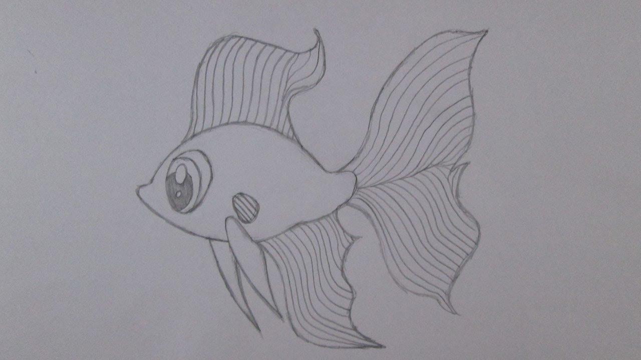 Como Desenhar Um Peixe Betta Youtube