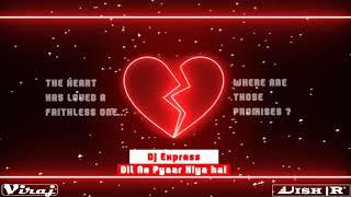 Dil Ne Pyaar Kiya Hai-Dj Express