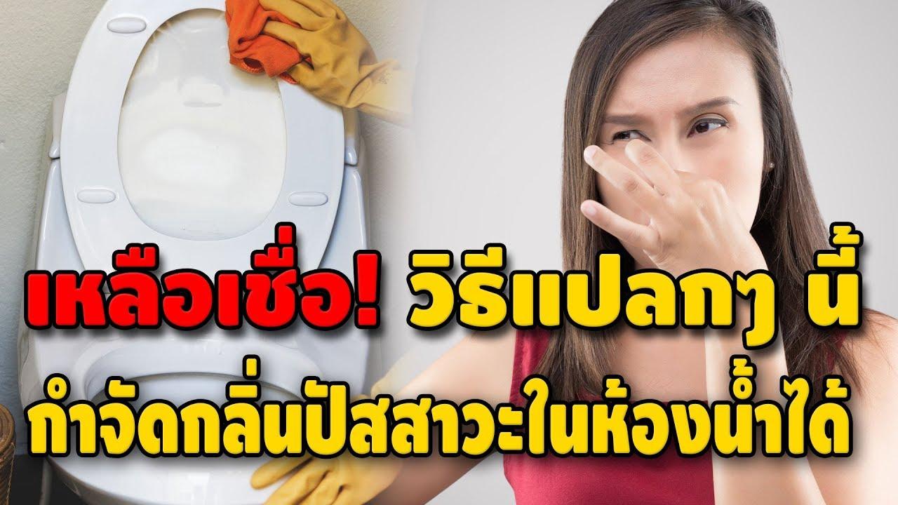 เหลือเชื่อ! วิธีกำจัดกลิ่นปัสสาวะในห้องน้ำ ด้วยของใกล้ตัว เหม็นแค่ไหนก็เอาอยู่