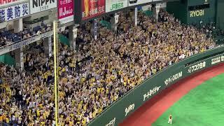 マルテ【2019.5.14】レフトスタンドへ3号ソロホームラン vs巨人 東京ドーム 阪神タイガース JEFRY MARTE