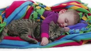 Gambar cover Komik Kediler ve Bebekler   Kediler ve Bebeklerin Sevimli Dostluğu
