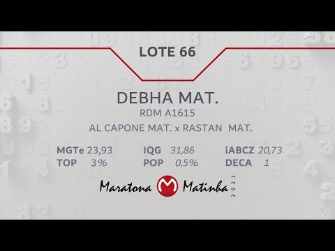 LOTE 66 Maratona Matinha