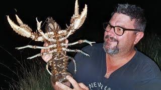 Very big crayfish