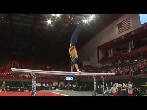 Illinois Men's Gymnastics Big Ten Event Finals Highlights 3/29/14