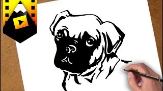 como dibujar un poodle frances | how to draw a french poodle