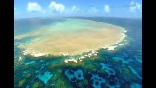 DELIK - V Oceáne ft. IDEA , BOY WONDER [UNOFFICIAL VIDEO]