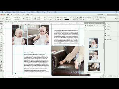 adobe bridge cs6 tutorial pdf